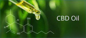CBD Oil and Edibles